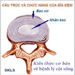 Chức năng cơ học của đĩa đệm